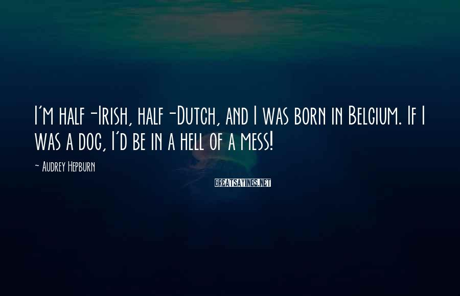 Audrey Hepburn Sayings: I'm half-Irish, half-Dutch, and I was born in Belgium. If I was a dog, I'd
