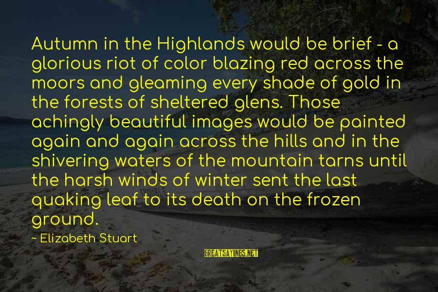 Autumn Winds Sayings By Elizabeth Stuart: Autumn in the Highlands would be brief - a glorious riot of color blazing red