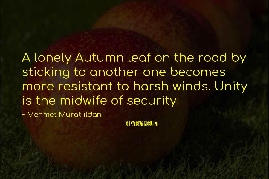 Autumn Winds Sayings By Mehmet Murat Ildan: A lonely Autumn leaf on the road by sticking to another one becomes more resistant