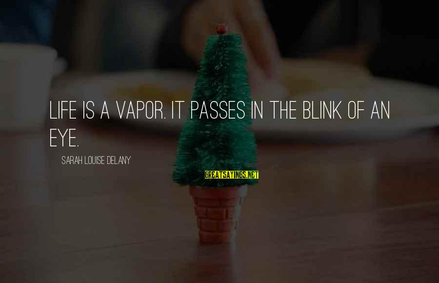 Bad Parent Relationship Sayings By Sarah Louise Delany: Life is a vapor. It passes in the blink of an eye.