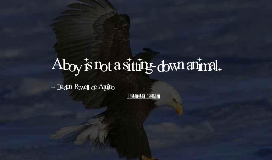 Baden Powell De Aquino Sayings: A boy is not a sitting-down animal.