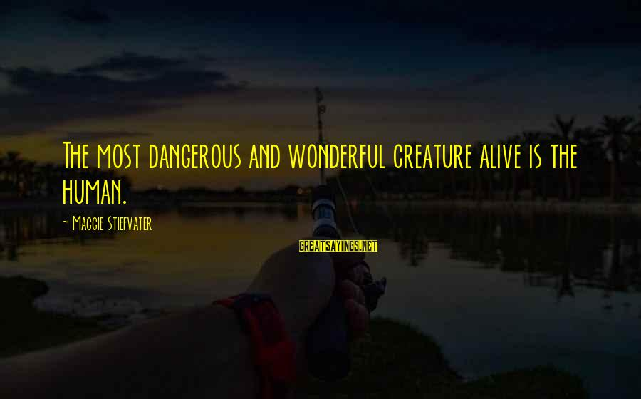 Ballad Sayings By Maggie Stiefvater: The most dangerous and wonderful creature alive is the human.