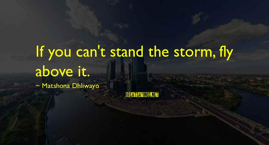 Ballet Tutus Sayings By Matshona Dhliwayo: If you can't stand the storm, fly above it.