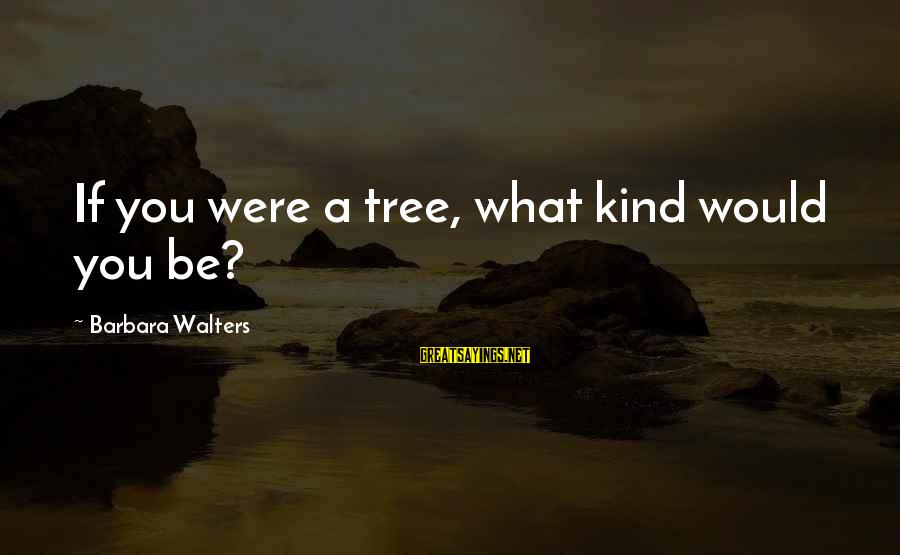 Barbara Walters Sayings By Barbara Walters: If you were a tree, what kind would you be?