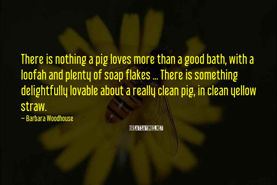 Barbara Woodhouse Sayings: There is nothing a pig loves more than a good bath, with a loofah and