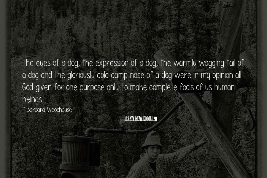 Barbara Woodhouse Sayings: The eyes of a dog, the expression of a dog, the warmly wagging tail of