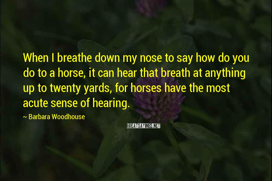 Barbara Woodhouse Sayings: When I breathe down my nose to say how do you do to a horse,