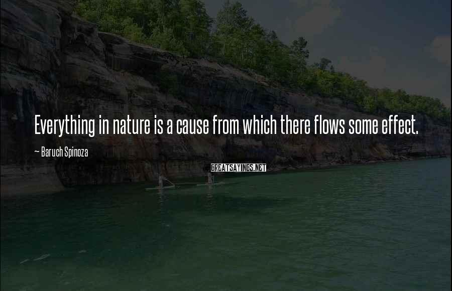 Baruch Spinoza Sayings: Everything in nature is a cause from which there flows some effect.