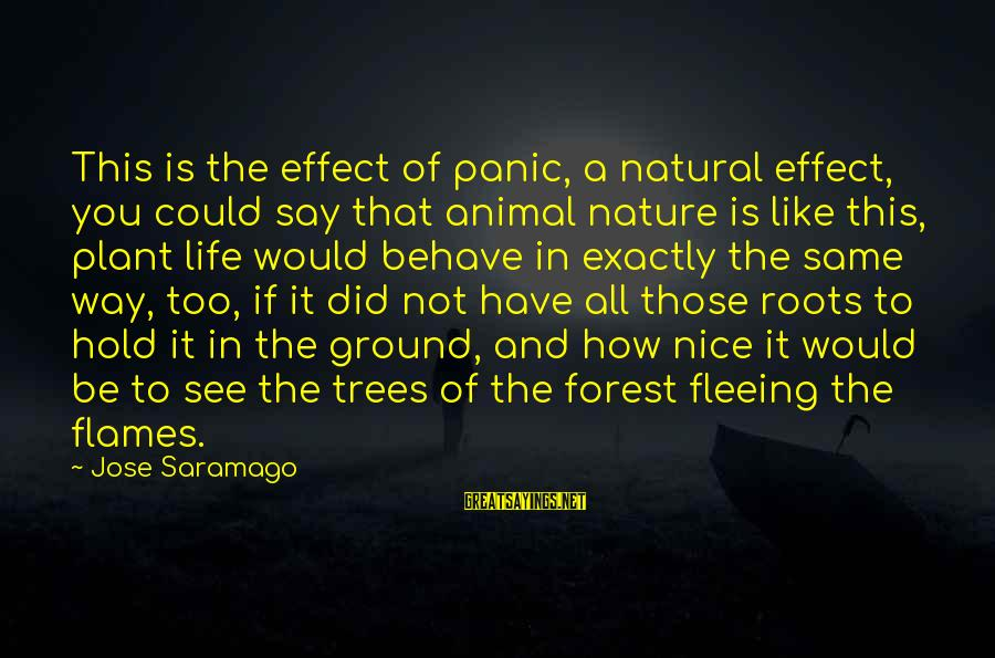 Be Nice Sayings By Jose Saramago: This is the effect of panic, a natural effect, you could say that animal nature