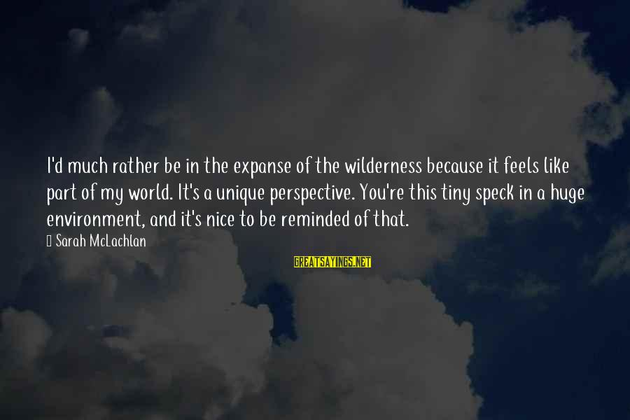 Be Nice Sayings By Sarah McLachlan: I'd much rather be in the expanse of the wilderness because it feels like part