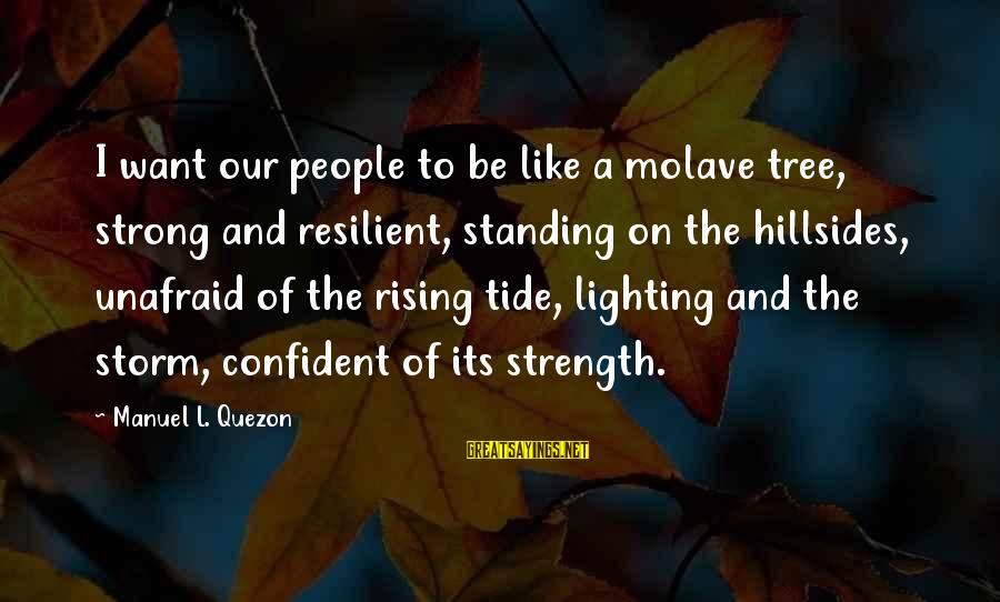 Be Strong And Confident Sayings By Manuel L. Quezon: I want our people to be like a molave tree, strong and resilient, standing on