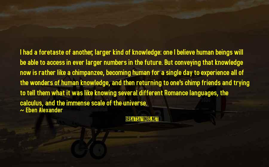Becoming Best Friends Sayings By Eben Alexander: I had a foretaste of another, larger kind of knowledge: one I believe human beings