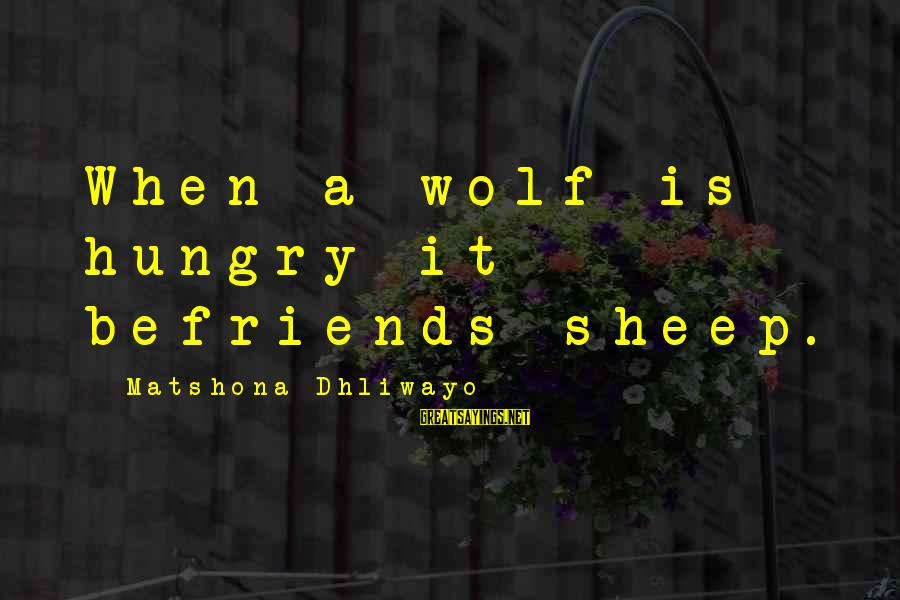 Befriends Sayings By Matshona Dhliwayo: When a wolf is hungry it befriends sheep.
