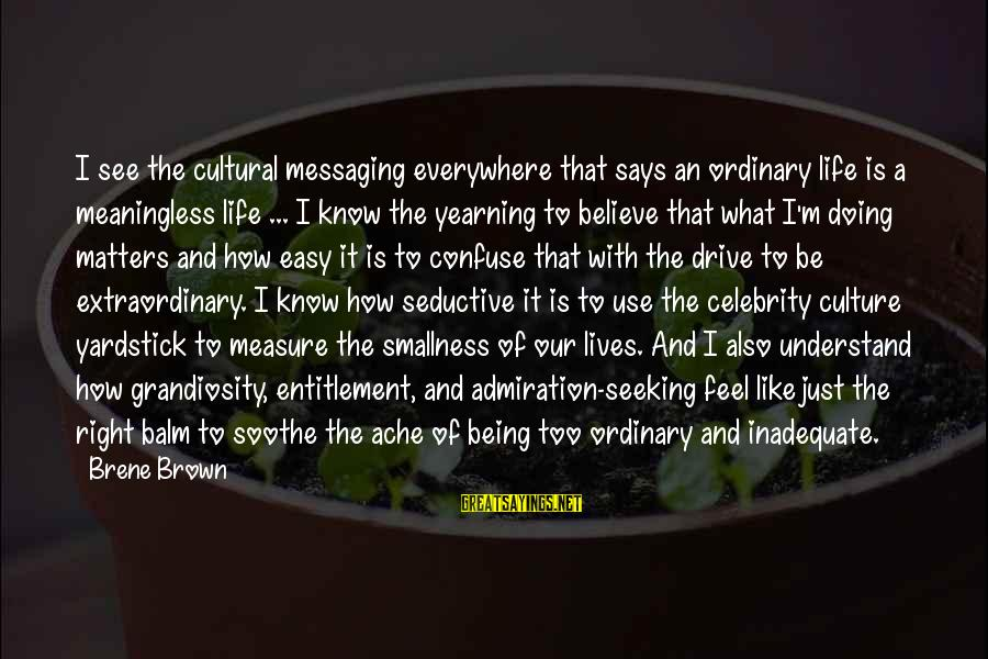 Being Daring Sayings By Brene Brown: I see the cultural messaging everywhere that says an ordinary life is a meaningless life
