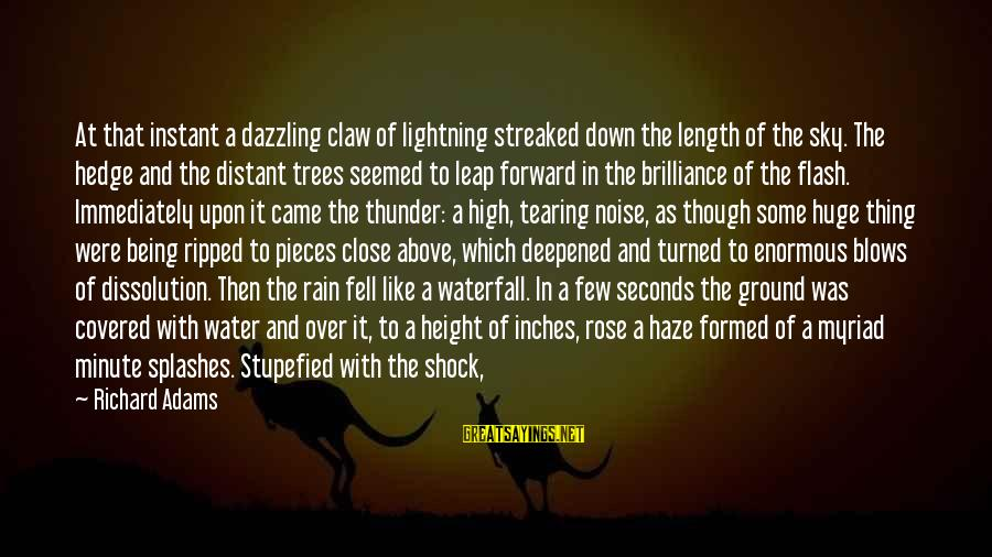 Being Ripped Off Sayings By Richard Adams: At that instant a dazzling claw of lightning streaked down the length of the sky.
