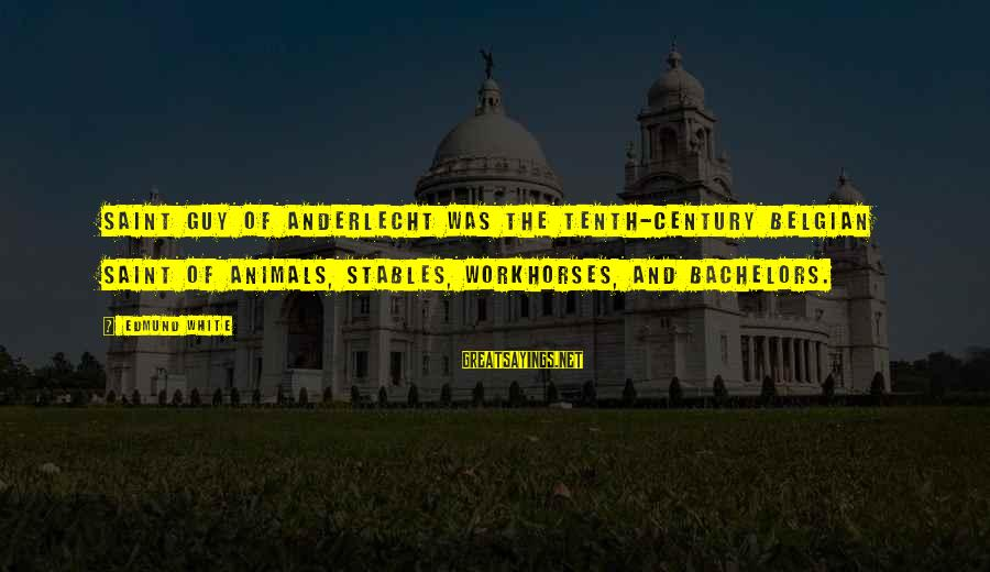 Belgian Sayings By Edmund White: Saint Guy of Anderlecht was the tenth-century Belgian saint of animals, stables, workhorses, and bachelors.