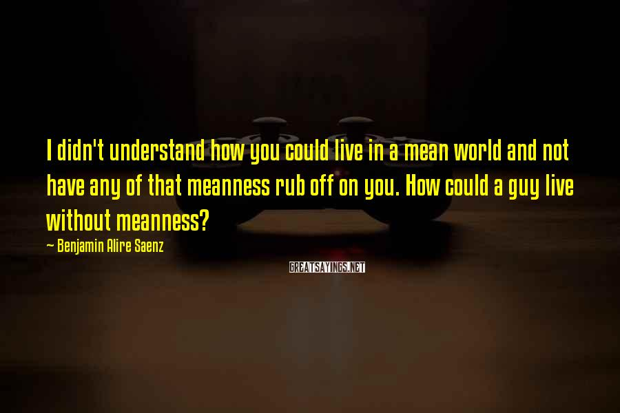 Benjamin Alire Saenz Sayings: I didn't understand how you could live in a mean world and not have any