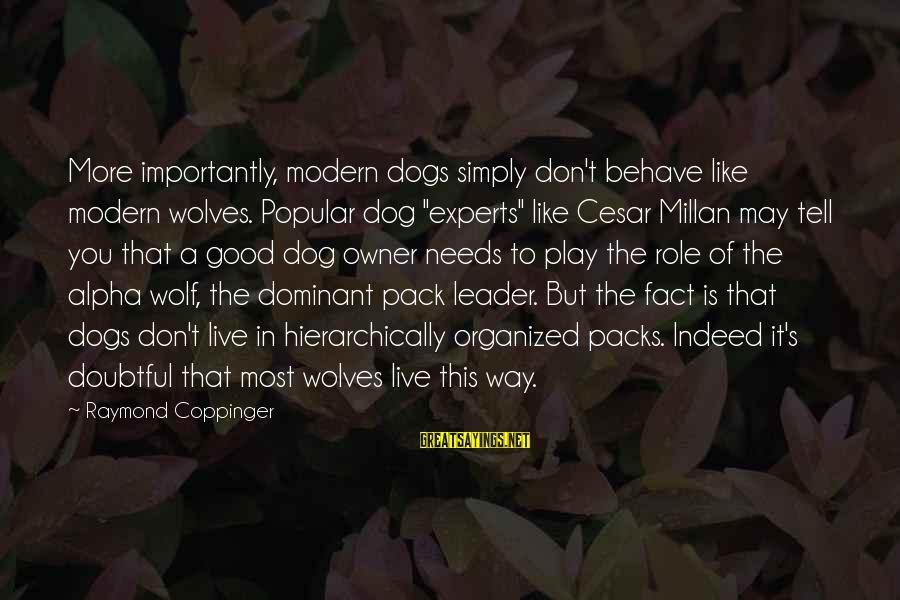 "Best Alpha Dog Sayings By Raymond Coppinger: More importantly, modern dogs simply don't behave like modern wolves. Popular dog ""experts"" like Cesar"