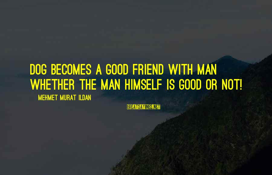 Best Dog And Man Sayings By Mehmet Murat Ildan: Dog becomes a good friend with man whether the man himself is good or not!