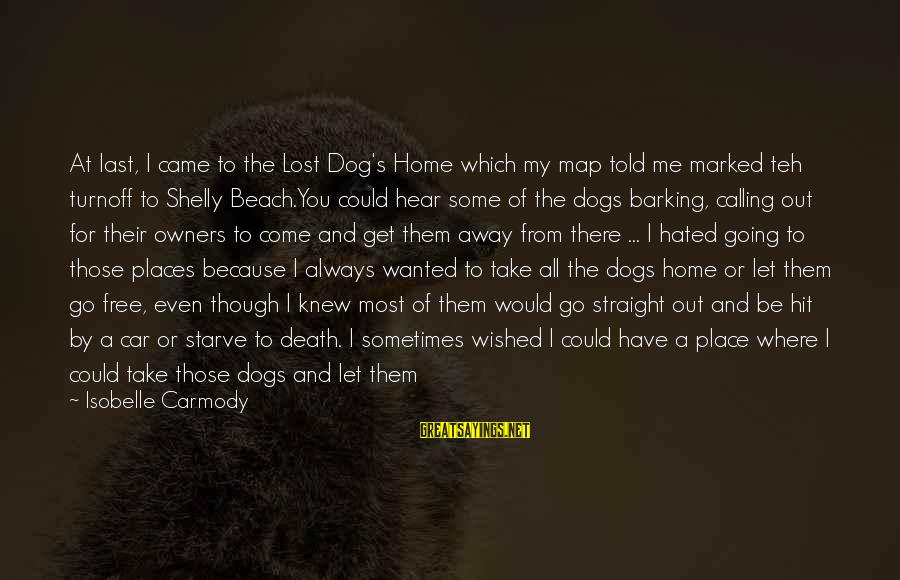 Best Dog Death Sayings By Isobelle Carmody: At last, I came to the Lost Dog's Home which my map told me marked