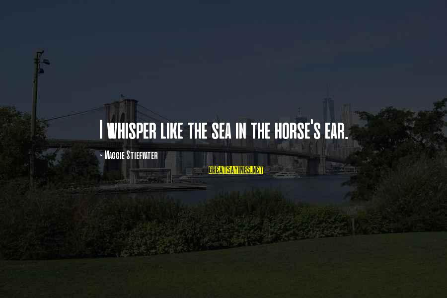 Best Horse Race Sayings By Maggie Stiefvater: I whisper like the sea in the horse's ear.