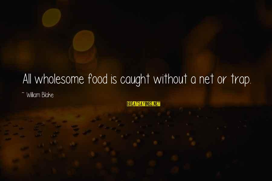 Best Robin Scherbatsky Sayings By William Blake: All wholesome food is caught without a net or trap.