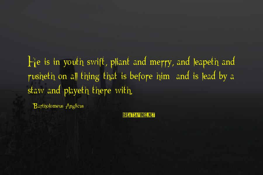 Best Sites To Find Sayings By Bartholomeus Anglicus: He is in youth swift, pliant and merry, and leapeth and rusheth on all thing