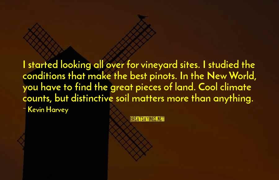 Best Sites To Find Sayings By Kevin Harvey: I started looking all over for vineyard sites. I studied the conditions that make the