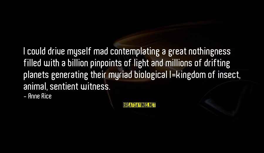 Beyond Duality Sayings By Anne Rice: I could drive myself mad contemplating a great nothingness filled with a billion pinpoints of