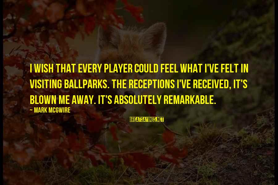Biblical Giving Sayings By Mark McGwire: I wish that every player could feel what I've felt in visiting ballparks. The receptions