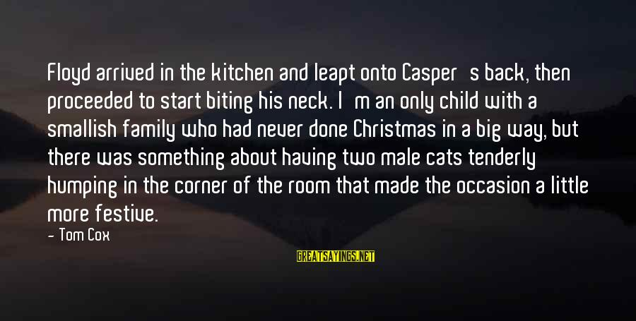 Big Family Sayings By Tom Cox: Floyd arrived in the kitchen and leapt onto Casper's back, then proceeded to start biting