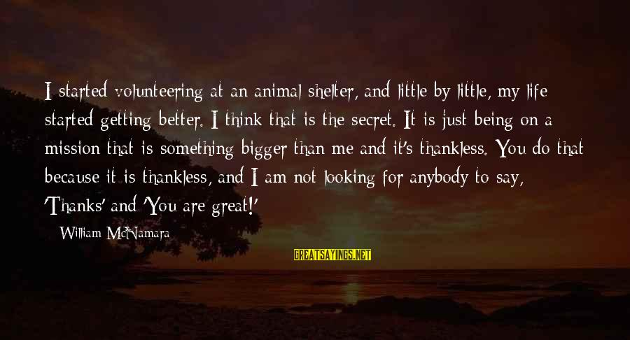 Bigger Not Being Better Sayings By William McNamara: I started volunteering at an animal shelter, and little by little, my life started getting
