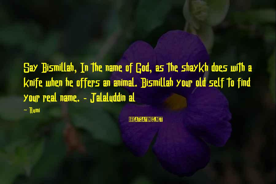 Bismillah Sayings By Rumi: Say Bismillah, In the name of God, as the shaykh does with a knife when