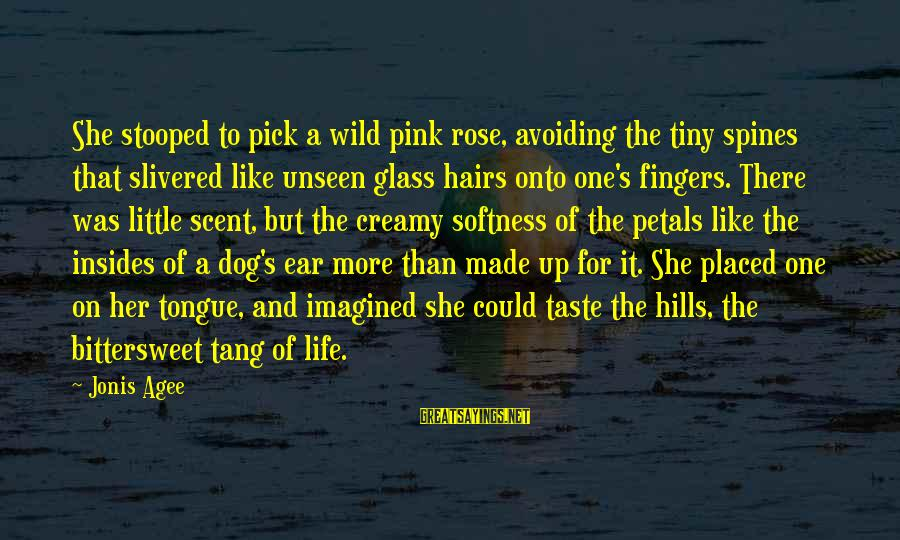 Bittersweet Life Sayings By Jonis Agee: She stooped to pick a wild pink rose, avoiding the tiny spines that slivered like