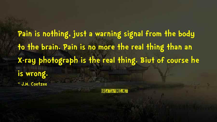 Biut Sayings By J.M. Coetzee: Pain is nothing, just a warning signal from the body to the brain. Pain is