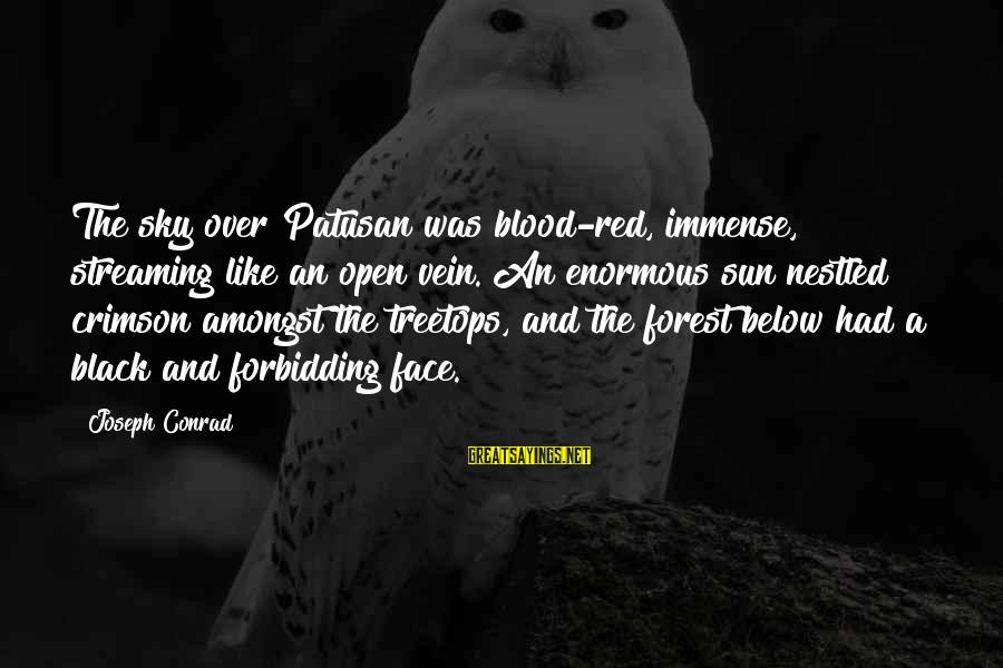 Black And Red Sayings By Joseph Conrad: The sky over Patusan was blood-red, immense, streaming like an open vein. An enormous sun