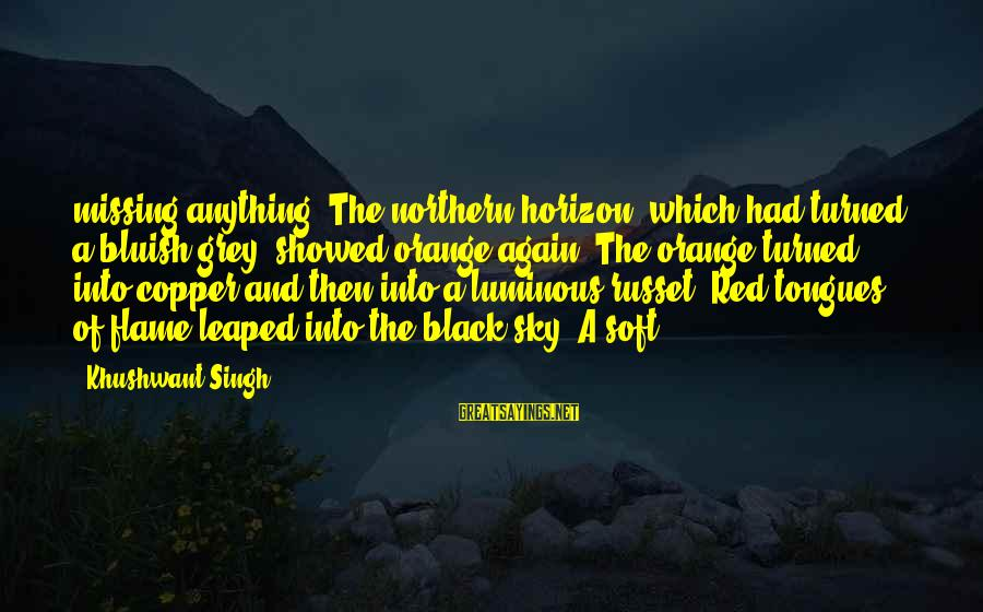Black And Red Sayings By Khushwant Singh: missing anything. The northern horizon, which had turned a bluish grey, showed orange again. The