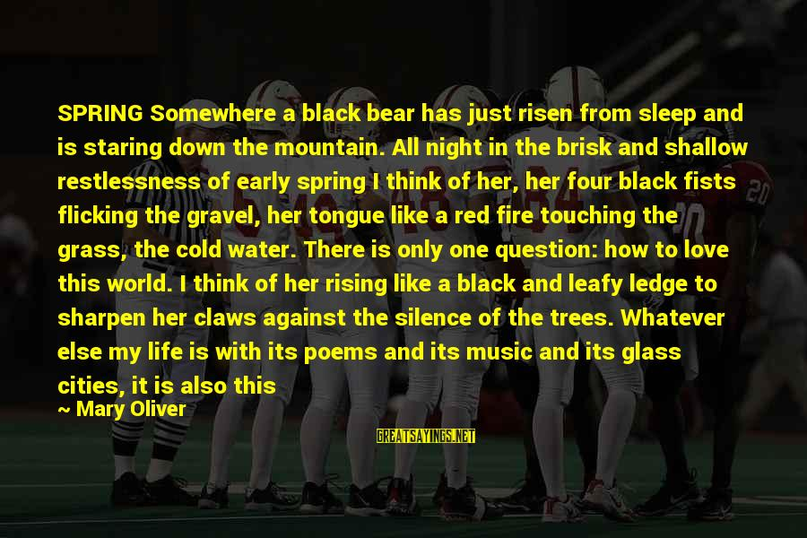 Black And Red Sayings By Mary Oliver: SPRING Somewhere a black bear has just risen from sleep and is staring down the