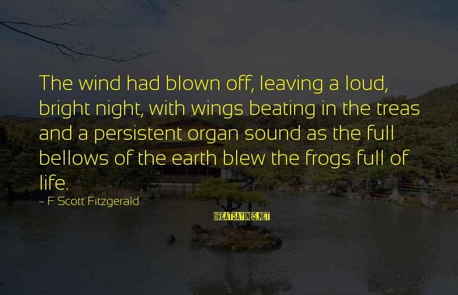 Blown Off Sayings By F Scott Fitzgerald: The wind had blown off, leaving a loud, bright night, with wings beating in the