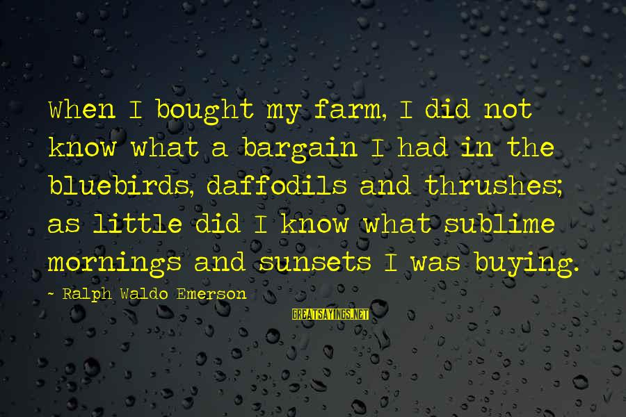 Bluebirds Sayings By Ralph Waldo Emerson: When I bought my farm, I did not know what a bargain I had in