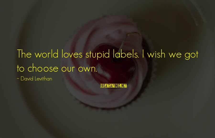 Boating Christmas Sayings By David Levithan: The world loves stupid labels. I wish we got to choose our own.