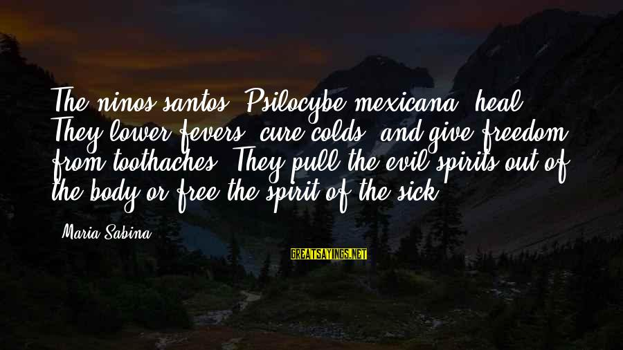 Body And Spirit Sayings By Maria Sabina: The ninos santos (Psilocybe mexicana) heal. They lower fevers, cure colds, and give freedom from