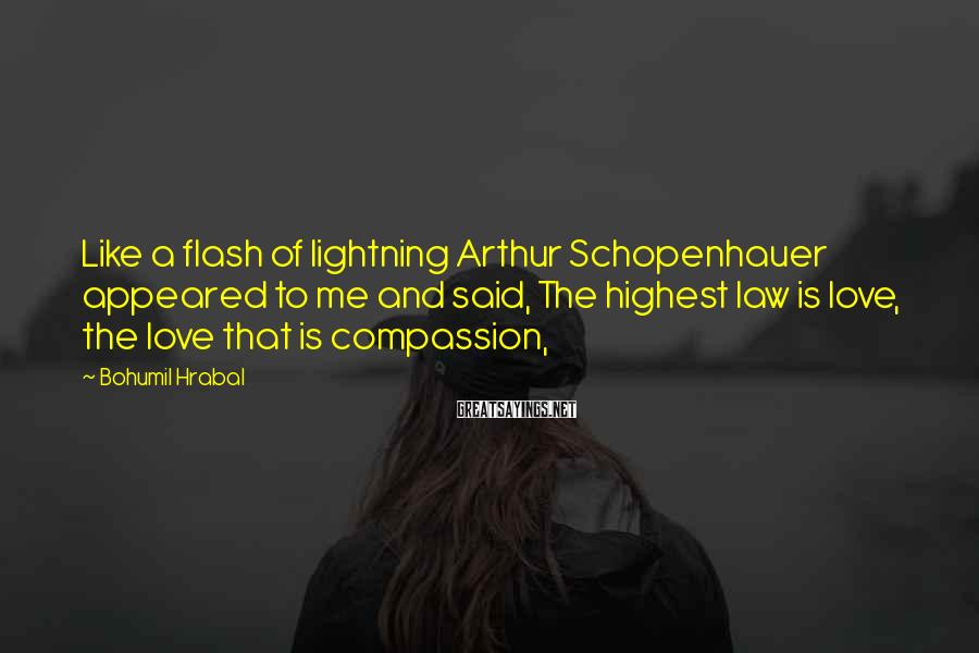 Bohumil Hrabal Sayings: Like a flash of lightning Arthur Schopenhauer appeared to me and said, The highest law