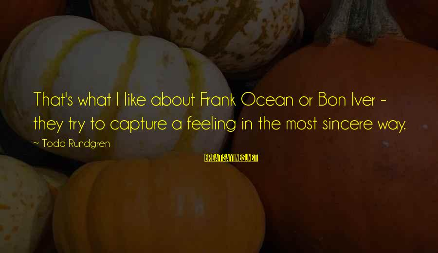 Bon Iver Sayings By Todd Rundgren: That's what I like about Frank Ocean or Bon Iver - they try to capture