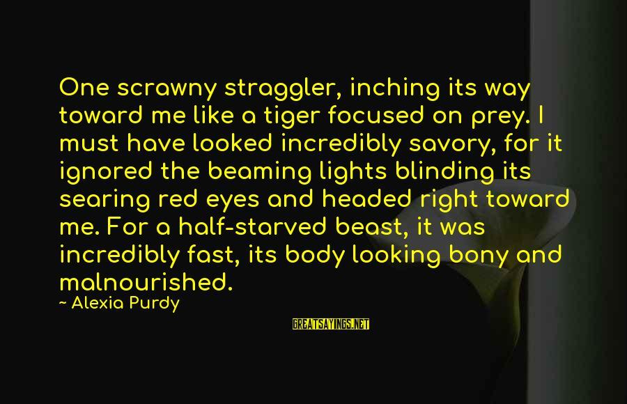 Bony Sayings By Alexia Purdy: One scrawny straggler, inching its way toward me like a tiger focused on prey. I