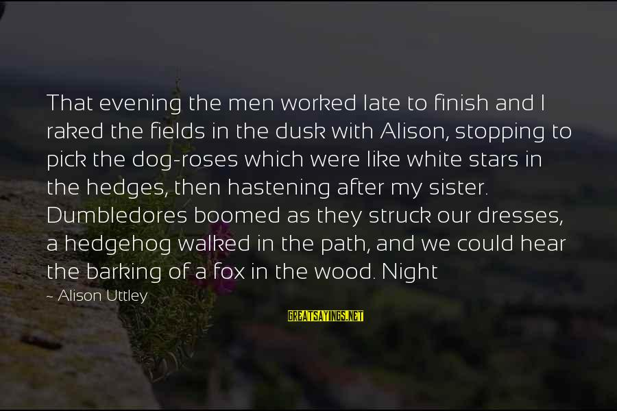 Boomed Sayings By Alison Uttley: That evening the men worked late to finish and I raked the fields in the
