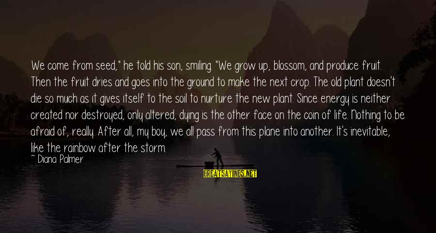 """Boy Smiling Sayings By Diana Palmer: We come from seed,"""" he told his son, smiling. """"We grow up, blossom, and produce"""