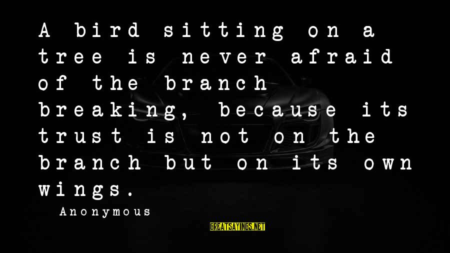 Breaking Trust Sayings By Anonymous: A bird sitting on a tree is never afraid of the branch breaking, because its