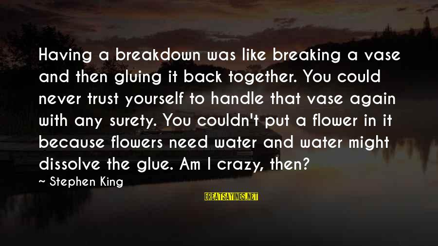 Breaking Trust Sayings By Stephen King: Having a breakdown was like breaking a vase and then gluing it back together. You