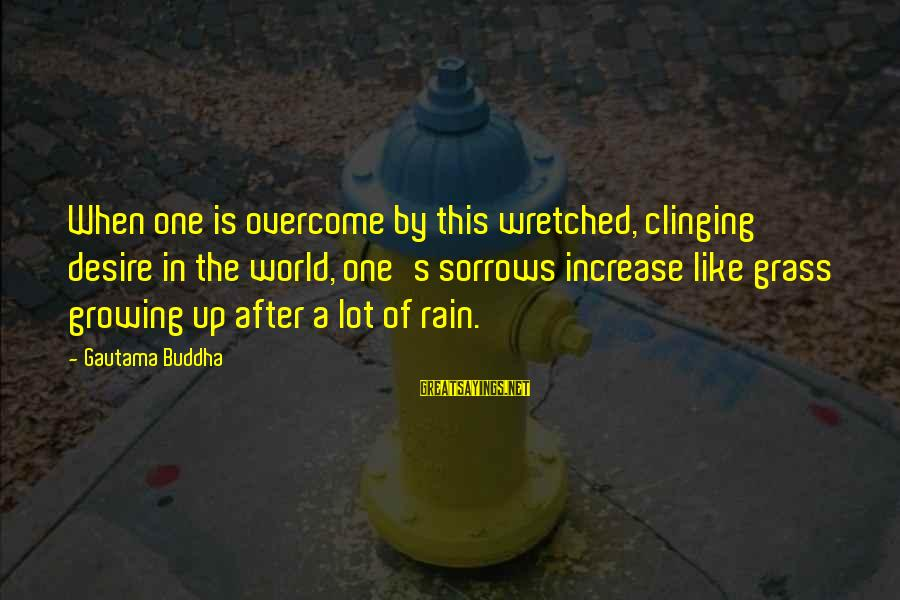 Buddha Clinging Sayings By Gautama Buddha: When one is overcome by this wretched, clinging desire in the world, one's sorrows increase